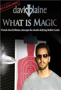 David Blaine: What Is Magic? (2010) Poster