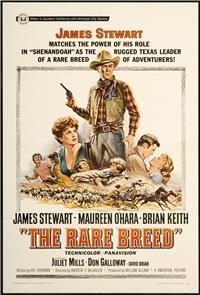 The Rare Breed (1966) Poster