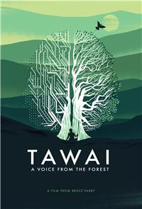 Tawai: A voice from the forest (2017) 1080p Poster