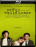 The Perks of Being a Wallflower (2012) 1080p Poster