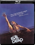 The Evil Dead (1981) 1080p Poster