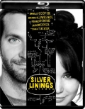 Silver Linings Playbook (2012) 1080p Poster