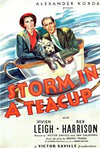 Storm in a Teacup (1937) 1080p poster