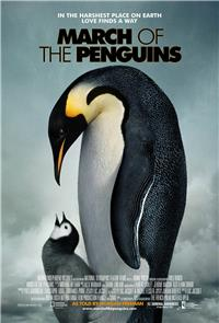 March of the Penguins (2005) 1080p poster