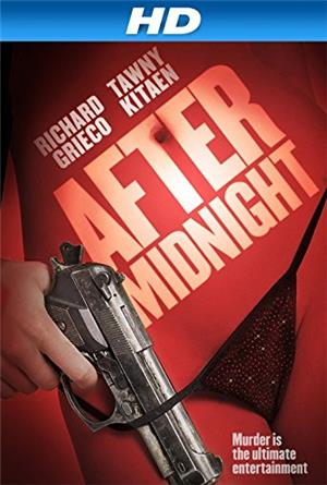 After Midnight (2014) Poster
