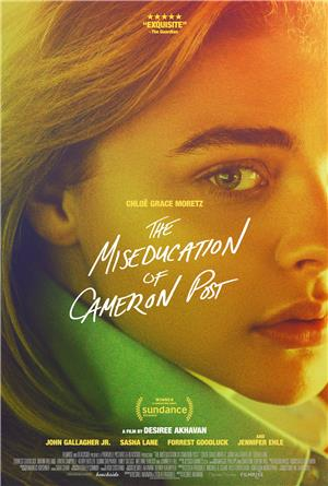 The Miseducation of Cameron Post (2018) Poster