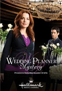 Wedding Planner Mystery (2014) 1080p Poster
