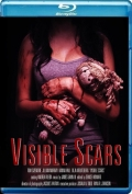 Visible Scars (2012) Poster