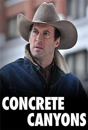 Concrete Canyons (2010) Poster