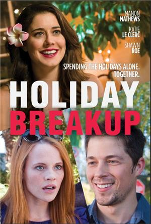 Holiday Breakup (2016) 1080p Poster