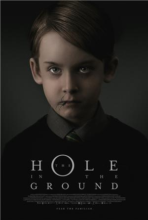 The Hole in the Ground (2019) 1080p Poster