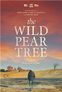 The Wild Pear Tree (2018) 1080p Poster