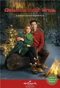 Christmas Under Wraps (2014) 1080p Poster