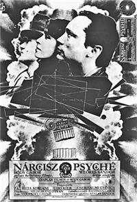 Narcissus and Psyche (1980) Poster