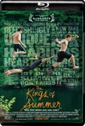 The Kings of Summer (2013) 1080p Poster