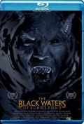 The Black Waters of Echo's Pond (2009) Poster
