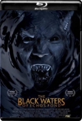The Black Waters of Echo's Pond (2009) 1080p Poster