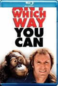 Any Which Way You Can (1980) Poster