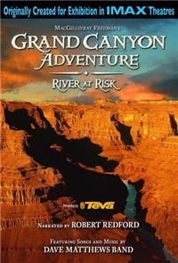 Grand Canyon Adventure: River at Risk (2008) 1080p Poster