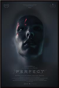 Perfect (2018) 1080p Poster