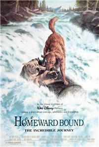 Homeward Bound: The Incredible Journey (1993) 1080p Poster