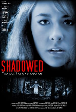 Shadowed (2013) 1080p Poster