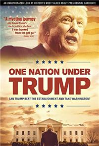 One Nation Under Trump (2016) 1080p Poster
