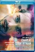 The Necessary Death of Charlie Countryman (2013) Poster