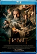 The Hobbit The Desolation of Smaug (2013) Poster