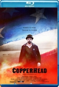 Copperhead (2013) Poster