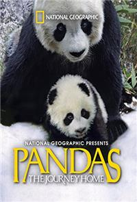 Pandas: The Journey Home (2014) Poster
