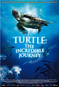Turtle: The Incredible Journey (2009) 1080p Poster
