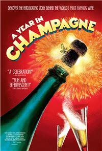 A Year in Champagne (2014) 1080p poster