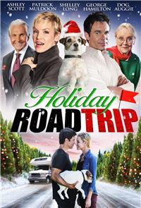 Holiday Road Trip (2013) 1080p poster