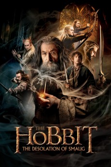The Hobbit: The Desolation of Smaug (2013) 3D Poster