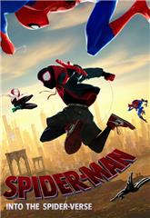 Spider-Man: Into the Spider-Verse (2018) 3D Poster
