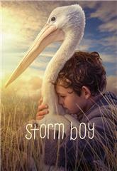 Storm Boy (2019) bluray Poster