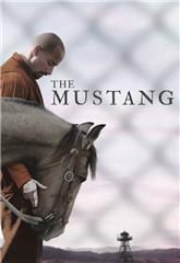 The Mustang (2019) bluray Poster