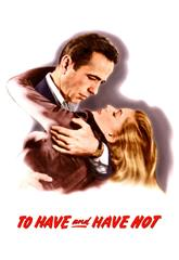 To Have and Have Not (1944) 1080p bluray Poster