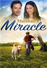 Marshall's Miracle (2015) 1080p web Poster