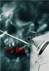Flight 7500 (2014) 1080p bluray Poster