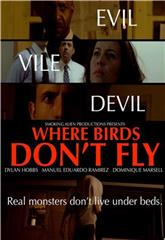 Where Birds Don't Fly (2017) 1080p Poster