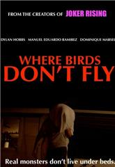 Where Birds Don't Fly (2017) Poster