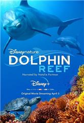 Dolphin Reef (2020) Poster