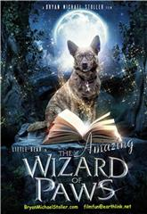 The Amazing Wizard of Paws (2015) 1080p Poster