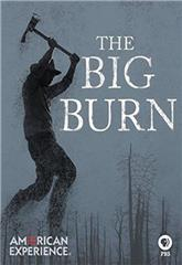 The Big Burn (2015) 1080p Poster