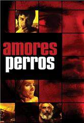 Amores Perros (2000) 1080p Poster