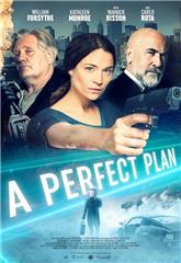 A Perfect Plan (2020) Poster
