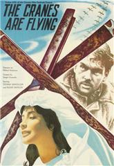 The Cranes Are Flying (1957) Poster