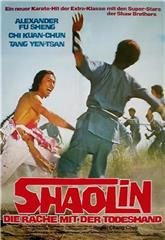 The Shaolin Avengers (1976) 1080p Poster